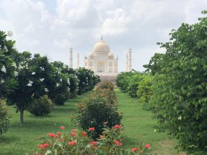 07 Days  – Golden Triangle Tours